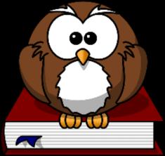 owl-47526__480_resized